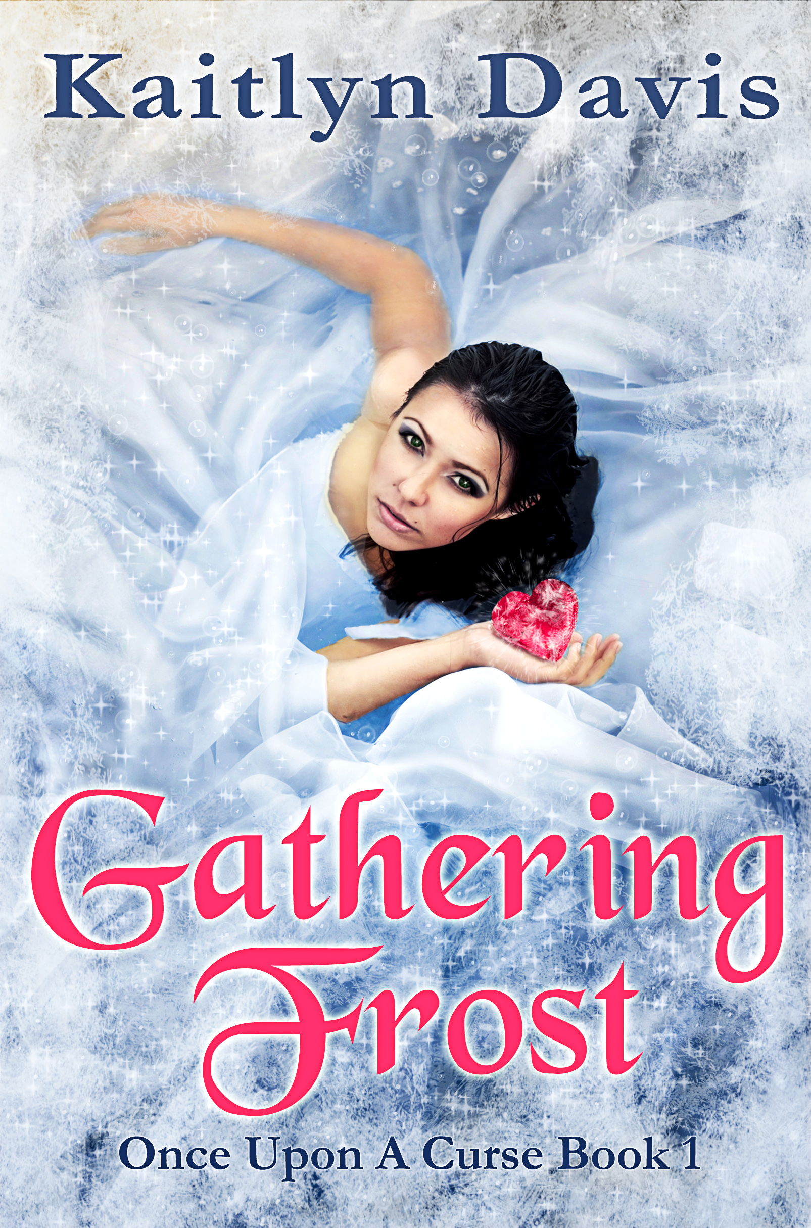 Gathering Frost Cover