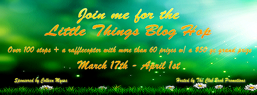 FB Little Things Banner